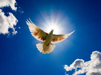 Muerte para la Gloria de Dios (Juan 11: 1-16)